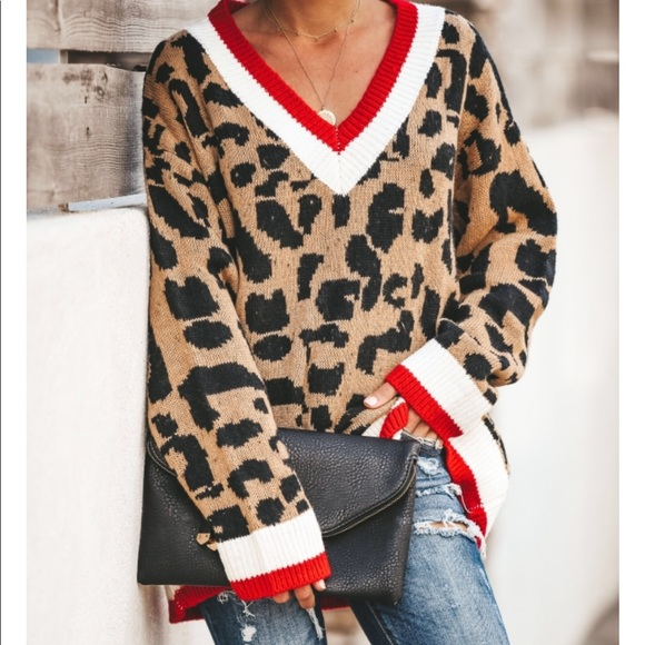 Vici Sweaters - Vici Leopard v neck knit sweater